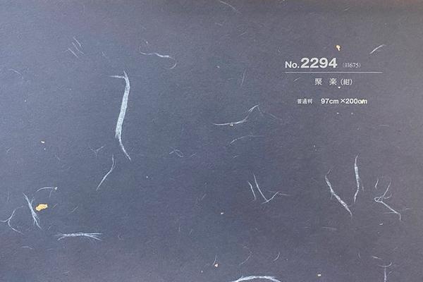 銀河No.2294