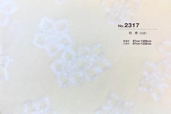 銀河No.2317
